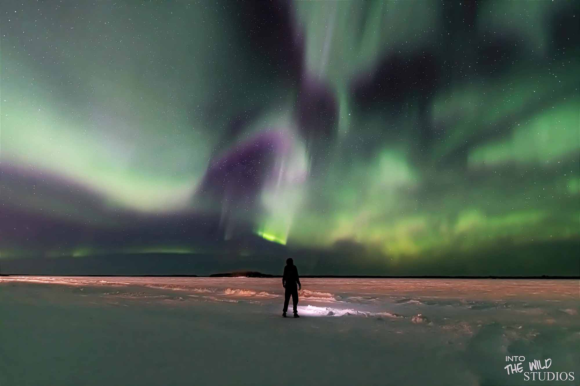 Jaredan Smith from the Pinehouse Photography Club captured this unique image under the northern lights. He posts his pictures on his Facebook page 'Into the Wild Studios' to help motivate and inspire others who might be going through tough times, such as depression and anxiety.