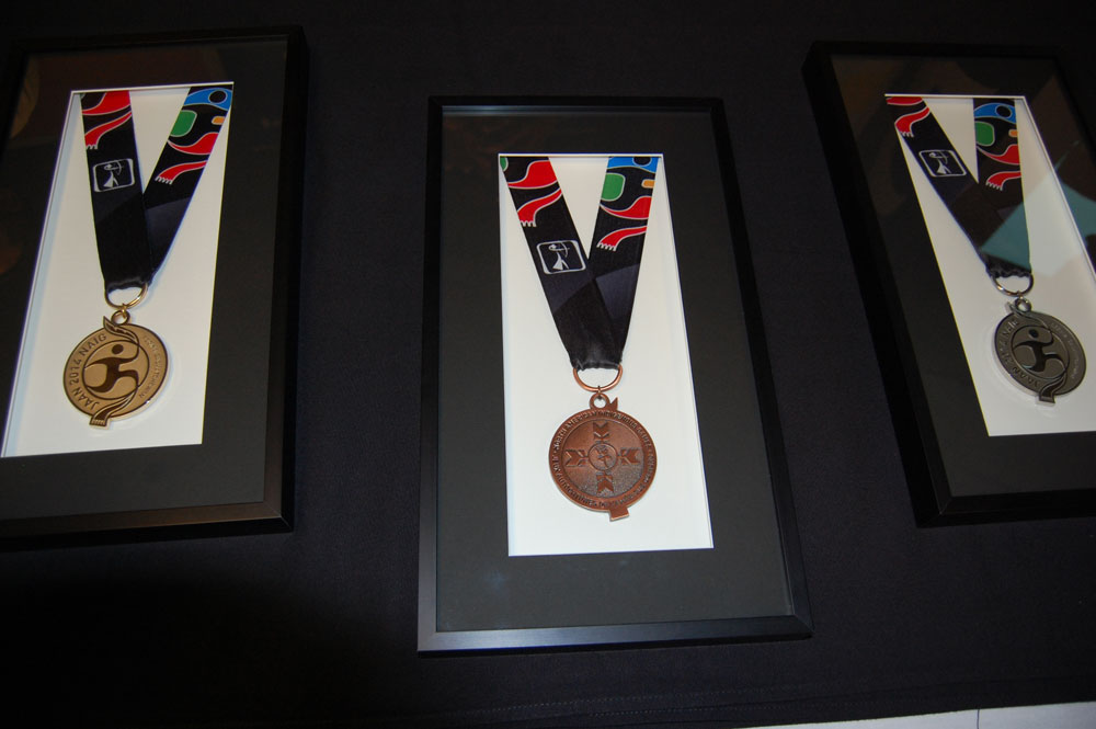 The 2014 NAIG medals - Gold, Bronze and Silver, which were designed and supplied by Regina Company Laurie Artiss - The Pin People.