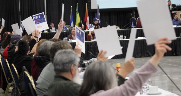 Delegates voted against and for different motions during the last day at the MNLA in Regina.